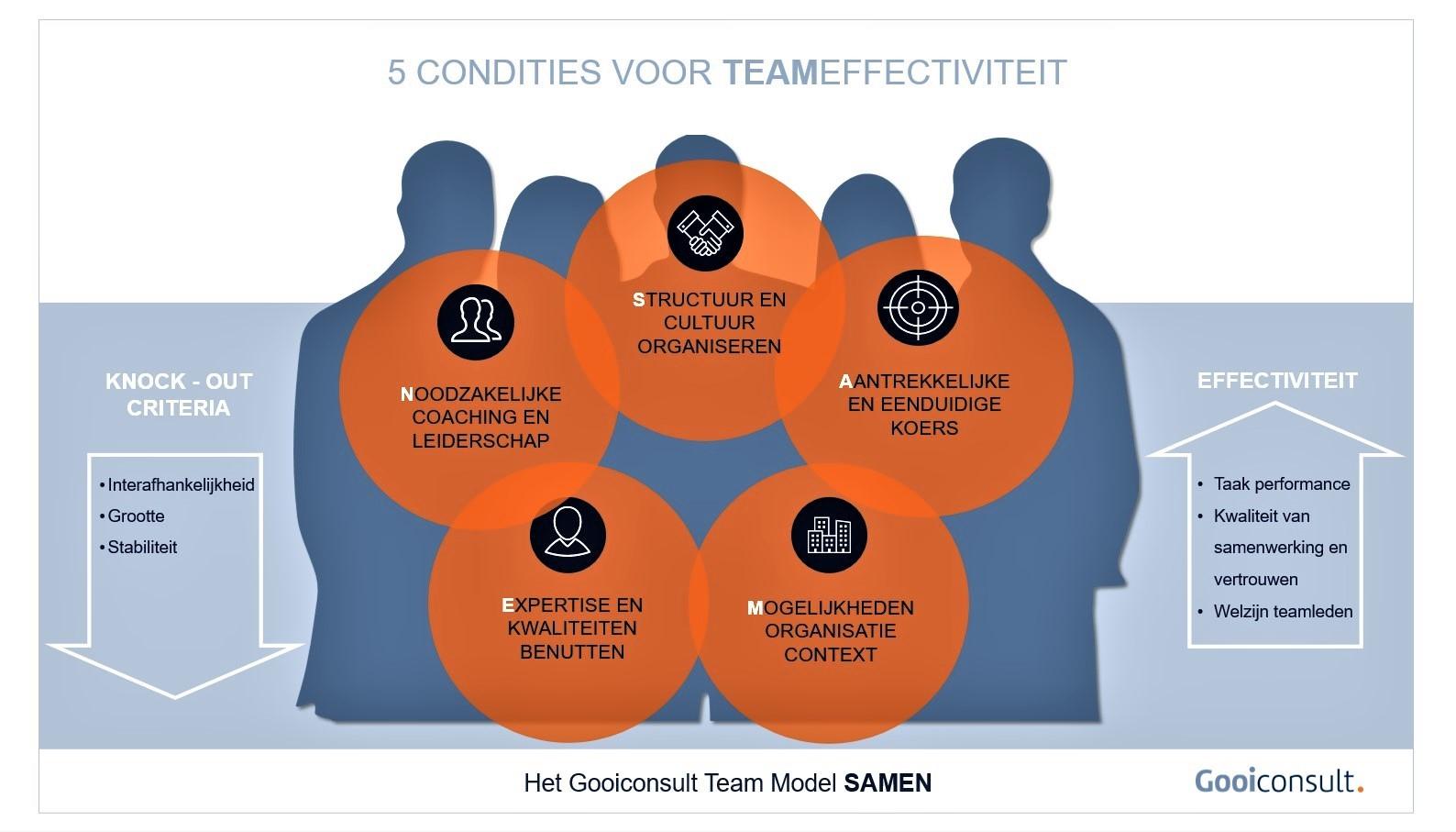 Gooiconsult Team Model SAMEN